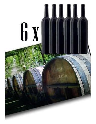 Confezione Regalo da 6 Bottiglie per Vino Spumante o Champagne