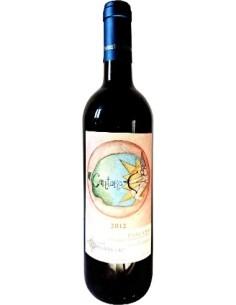 Cantore 2012 Podere Borgaruccio Biodynamic wine