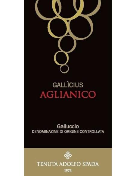 Galluccio Aglianico 2016 Tenuta Adolfo Spada Gallicius DOC