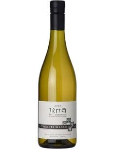 Terra Petit Derthona 2017 Vigneti Massa Vino Bianco