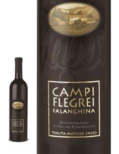 Falanghina 2019 Tenuta Matilde Zasso Campi Flegrei DOC