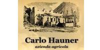 Hauner Carlo