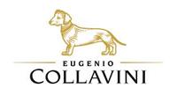 Collavini Eugenio