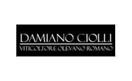 Damiano Ciolli