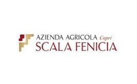 Scala Fenicia