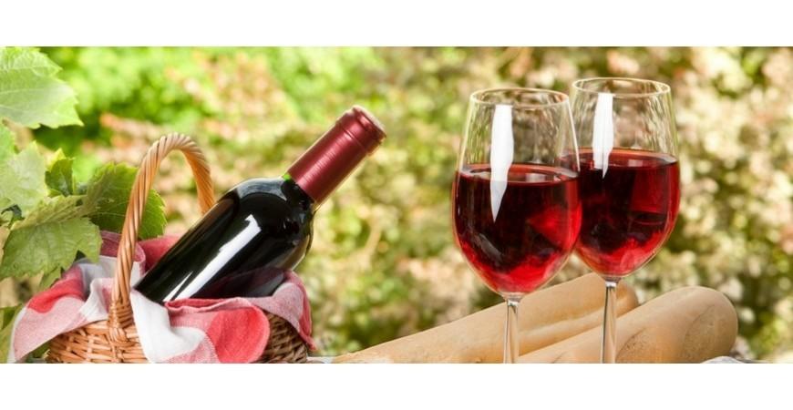 Il vino biologico : Regolamentazione , boom dei consumi ed export